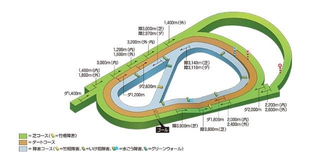 阪神競馬場 コース 傾向