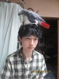 20連勝!?藤井聡太四段(将棋)の次の対戦相手とは?いつ行われる?
