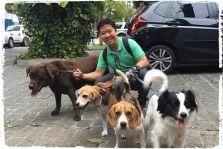 dog-walker-em-sao-paulo4