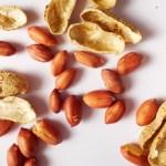 北海道の節分の豆まきは落花生にチョコ!!その理由と食べる豆の数は?