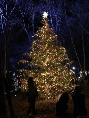 christmascandlenaight (1)