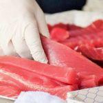 冷凍マグロを美味しく解凍する簡単な方法【豊洲仲卸直伝!!】