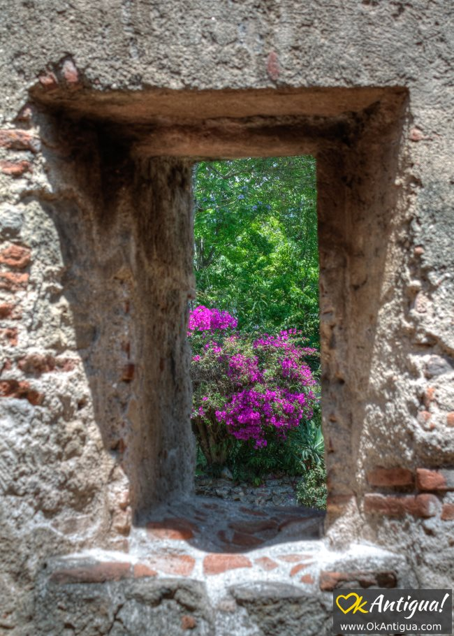 las capuchinas window