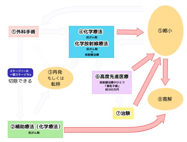膵臓がん治療の流れ チャート図 ⑧寛解