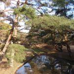 みやま公園・イノシシに奪われたエリアの今昔