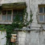 【戦慄】柵原鉱山の人々が暮らした社宅を見てきたよ…