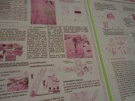 Scuola Primaria Cavernago Bg Giornalino (3)