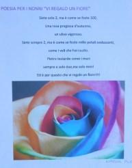 Menzione d'onore - Un fiore per voi 2014 (10)