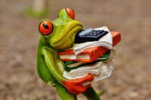 電卓を持つカエルの画像