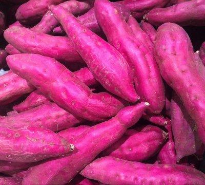sweet-potato-1615024_640
