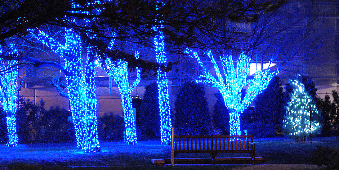 Wrapped Tree Lights