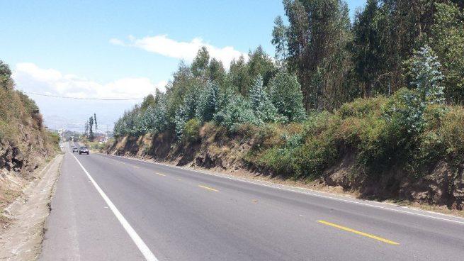 Esta es la carretera más larga del mundo