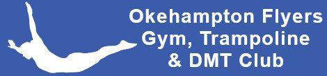 Okehampton Flyers Gym Trampoline and DMT Club
