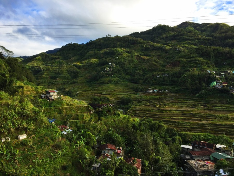 Balcony vew of rice terraces from Banaue Homestay