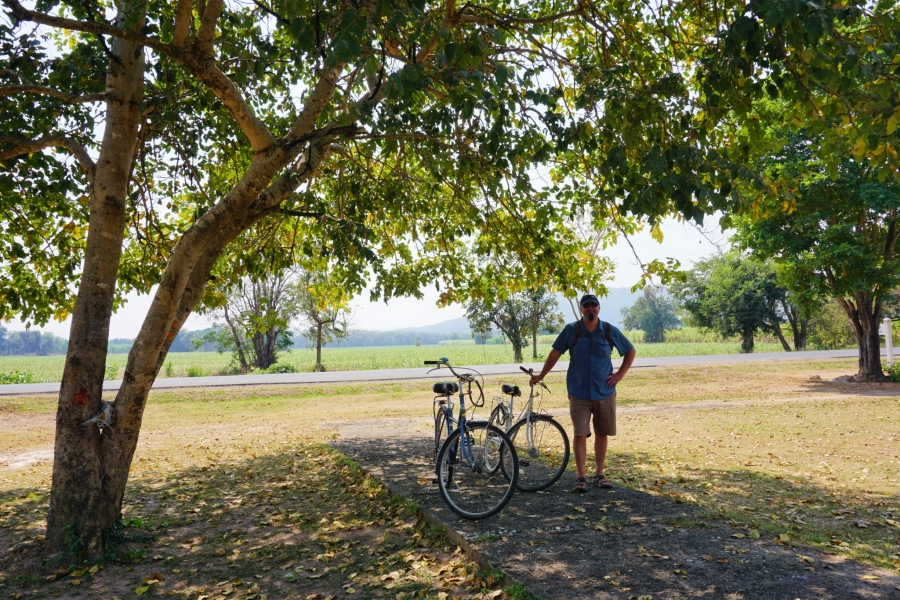 Sukhothai, Thailand, break time, bicycling, shade, Southeast Asia, temples