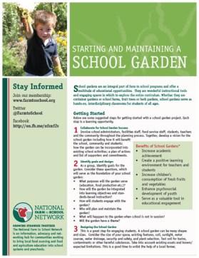 school-garden-cover