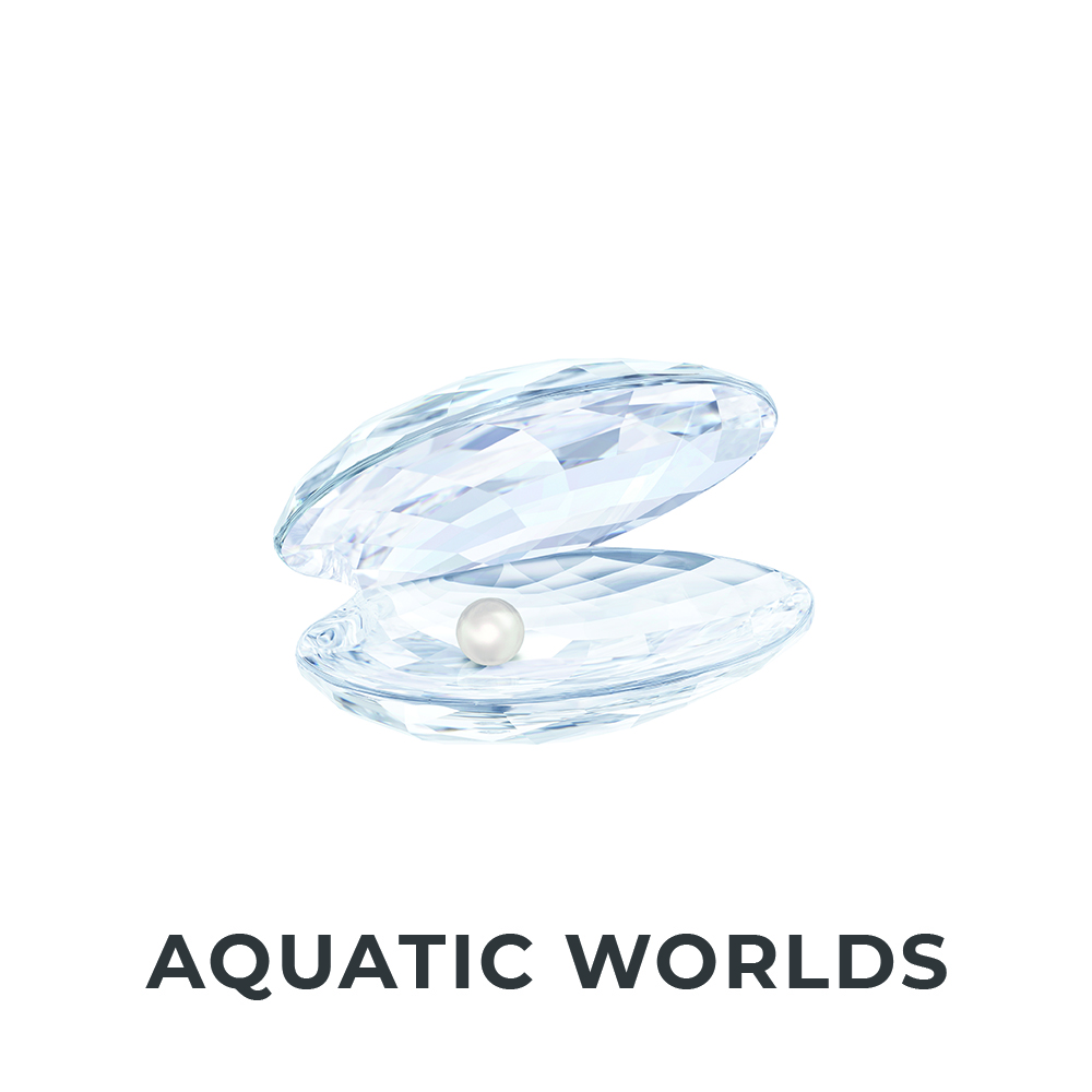 Aquatic Worlds