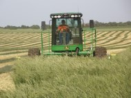 Our son, Clayton, swathing hay.
