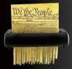 constitution-shred