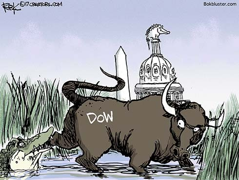Bull in the Swamp