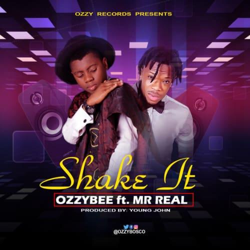 OzzyBee ft. Mr Real – Shake It