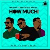 Medikal ft. Sarkodie & Paedae – How Much (Remix) Artwork