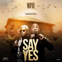 Wayo ft. Darkovibes – Say Yes (Prod. by Kuvie)