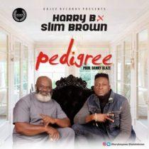 Harry B ft. Slim Brown – Pedigree