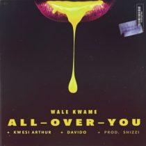 Wale Kwame ft. Davido & Kwesi Arthur – All Over You