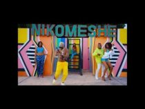 [Video] Dully Sykes ft. Harmonize – Nikomeshe