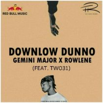 Gemini-Major-Downlow-Dunno