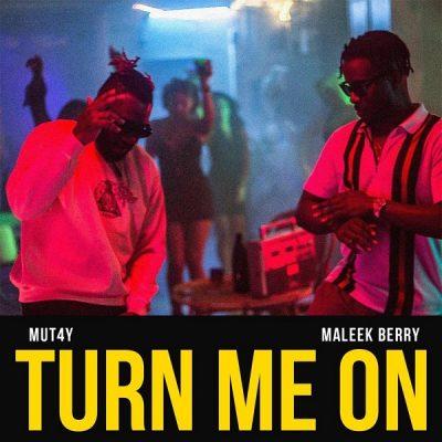 Mut4y ft. Maleek Berry – Turn Me On