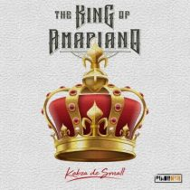 The king of Amapiano Artwork