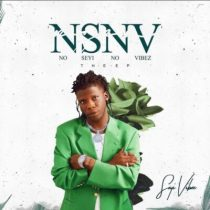 Seyi Vibez ft. Reekado Banks – Pay Day