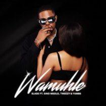 Wamuhle ft. Sino Msolo, Tweezy, Yumbs - Slade