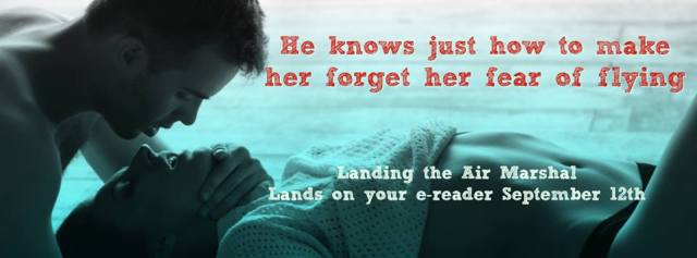landing-the-air-marshal-teaser-graphic-banner
