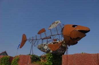 Fokarium, Hel, szkielet ryby wypełniony śmiećmi wyrzuconymi beztrosko przez turystów