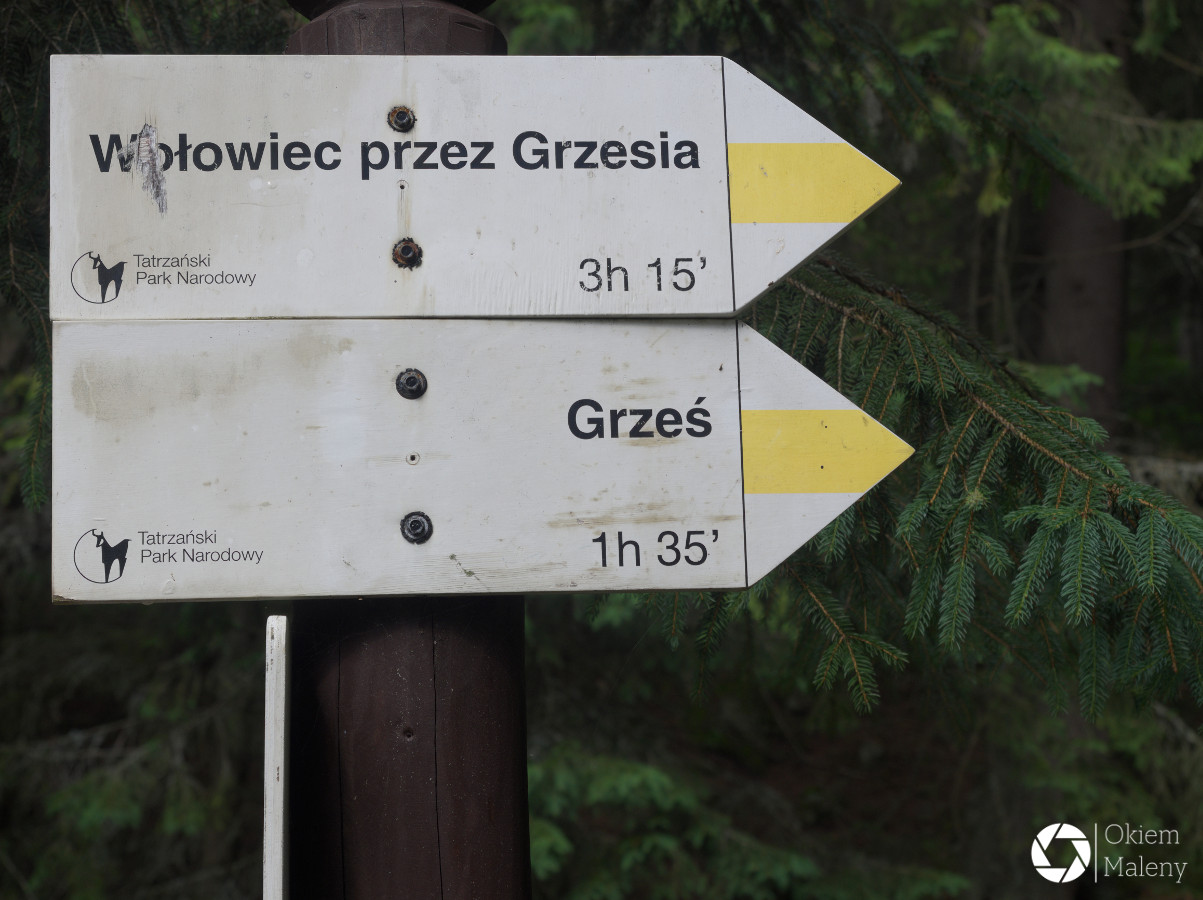 Oznakowanie szlaku, Dolina Chochołowska
