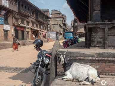 Nepal, życie miasta