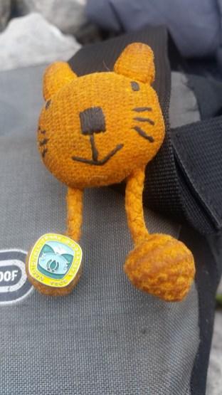 Kotek z odznaką