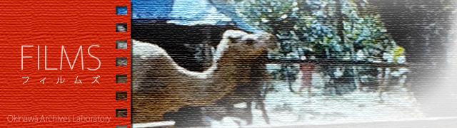 【FILMS】中城城跡 動物園