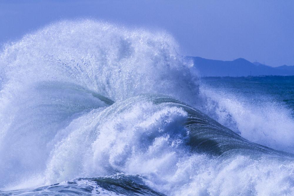 沖縄の台風後対策