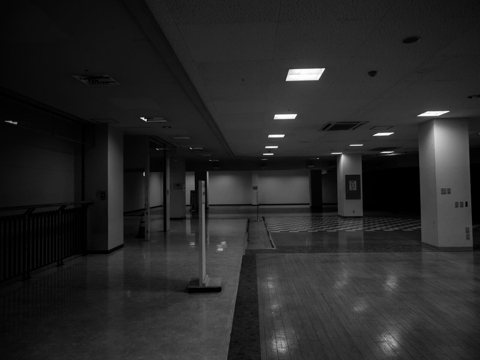 コリンザ白黒写真7
