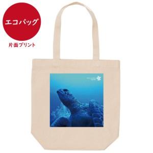 海と自然塾ビティ No.7(エコバッグ)