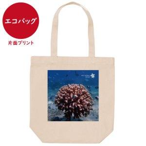海と自然塾ビティ No.33(エコバッグ)