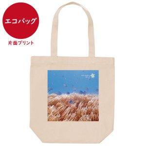 海と自然塾ビティ No.34(エコバッグ)