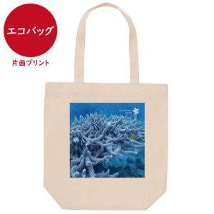 海と自然塾ビティ No.35(エコバッグ)