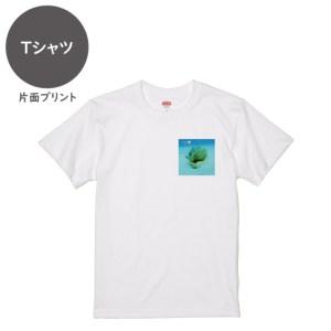 海と自然塾ビティ No.43(Tシャツ)
