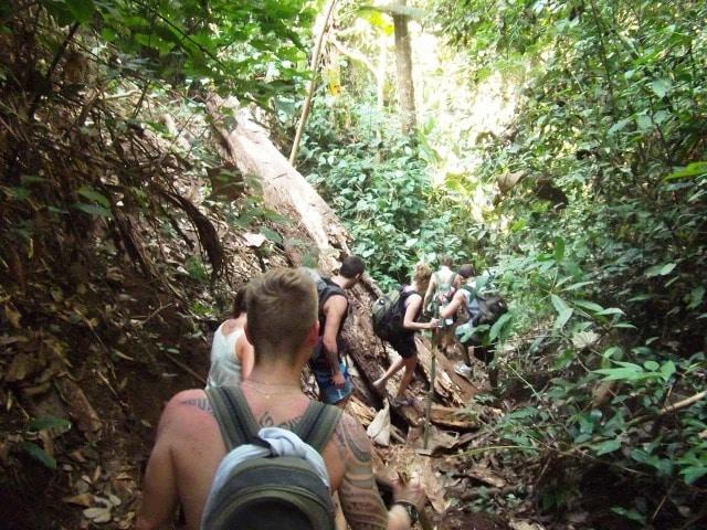 Trekking in Chiang Mai l Okinawa Hai!