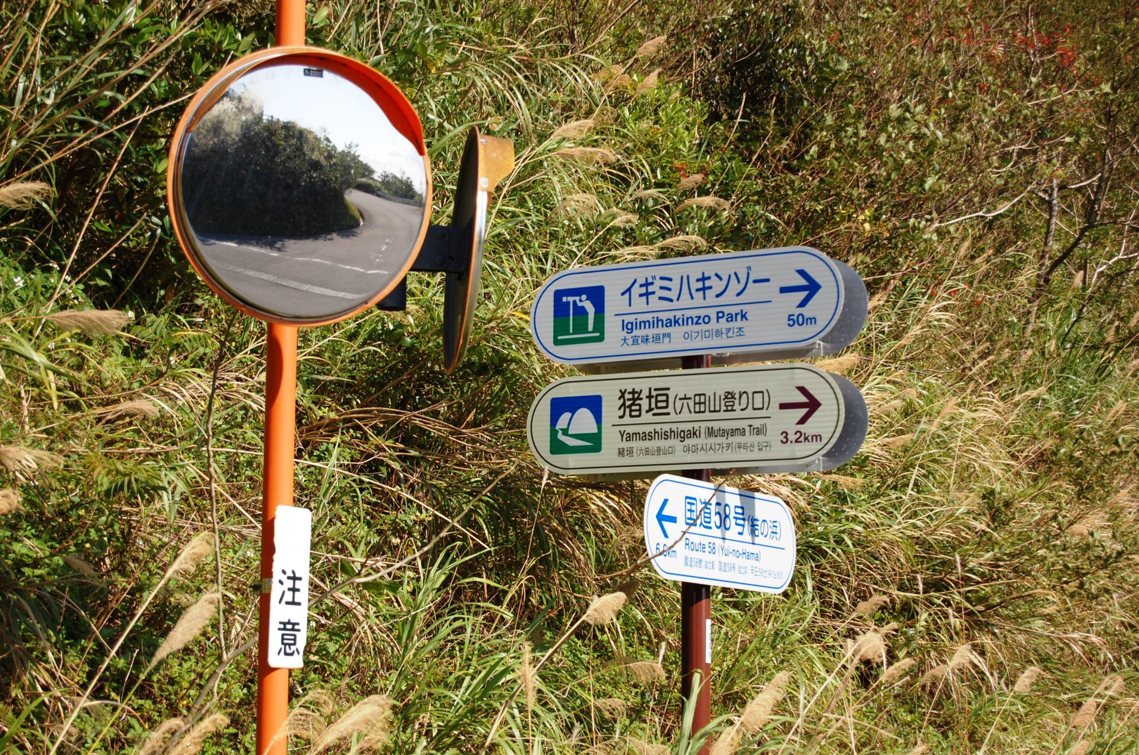 Igimihakinzo Park   Okinawa Hai!